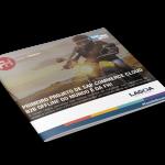 Case Grupo Lagoa - SAP Commerce B2B Offline